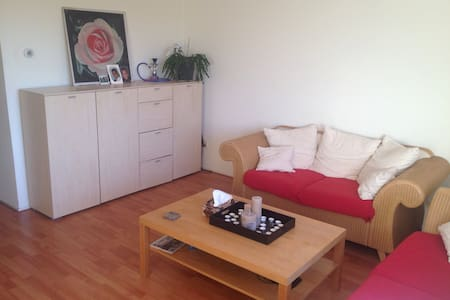 Lovely appartment with lakeview - Almere
