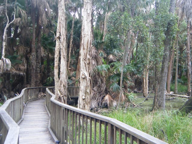 Couran Cove Island Resort (Private) Eco-Cabin - South Stradbroke - Cabin