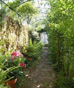 Magical Villa Rosa, Camogli, with garden & parking