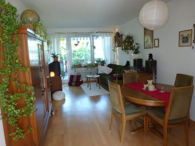Seeblick-Wohnung mit Katzen - Erlenbach - Apartemen