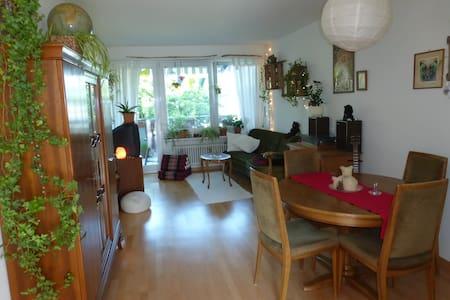 Seeblick-Wohnung mit Katzen - Erlenbach - 公寓