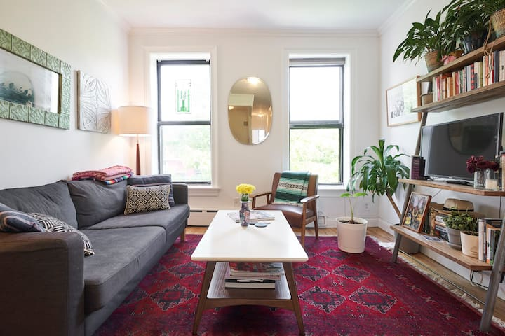 Stylish One-Bedroom Apartment in Park Slope