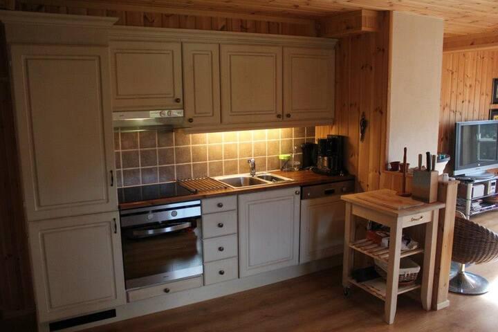 Flott leilighet for venner og familie på Beito