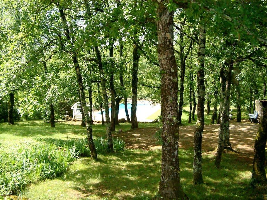 Maison calme piscine a partager huizen te huur in for Aquilus piscine villefranche de rouergue