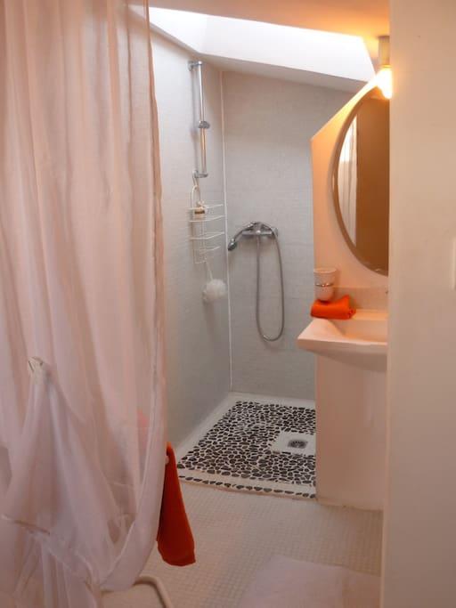 La salle de bains avec douche, douche, toilette est lavabos sont à l'intérieur de la chambre