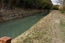 Balade au bord du canal