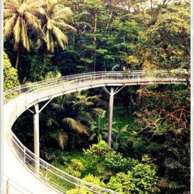 Beautiful garden near you - Hort Park