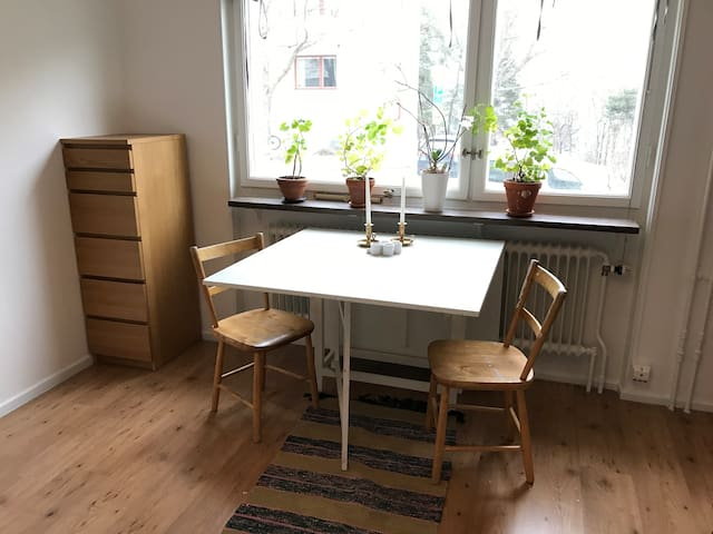 Nice apartment close to Stockholm City - Stockholm - Appartement
