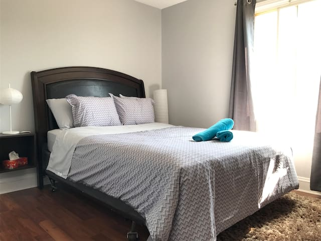 Modern & Cute Apartment Downtown with Free Parking