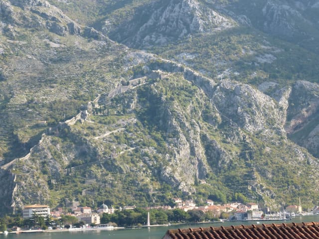 Kotor TIMI 40m off the beach with garden grill - Kotor - House