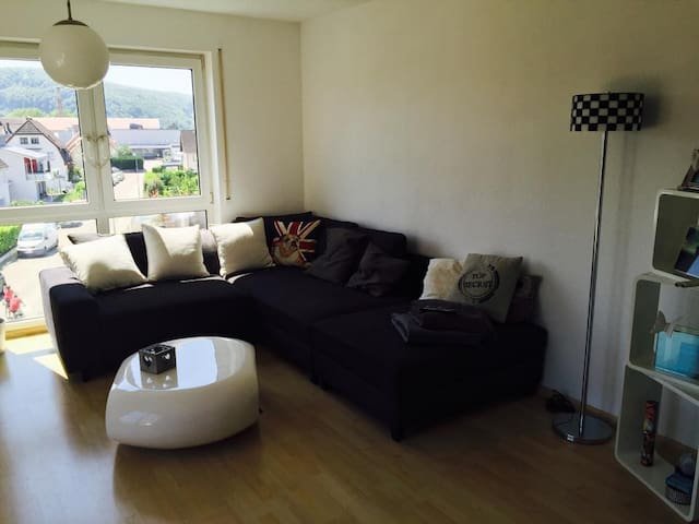 ART Basel - Nice 3 room apartment!! - Lörrach - House