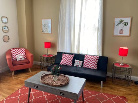 Charming 1 BR Apartment in Downtown Free WiFi