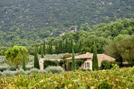 Charming country cottage near Lourmarin