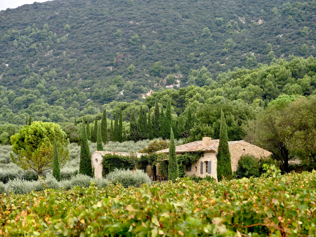 Traditional stone villa called the petit mas set against the Luberon mountains surrounded by vineyards and olive orchards. Shady patio and private front garden with spactacular outlook over the Durance valley.
