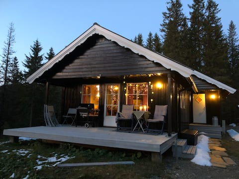 Lun og koselig hytte på Teveltunet