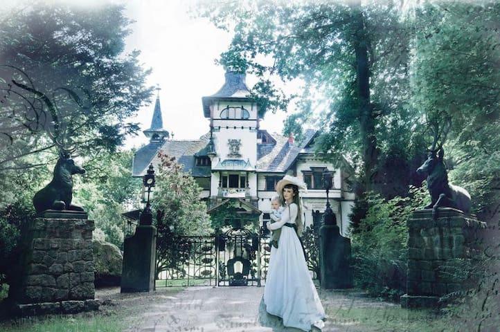Schloss Heinrichshorst - Rogätz