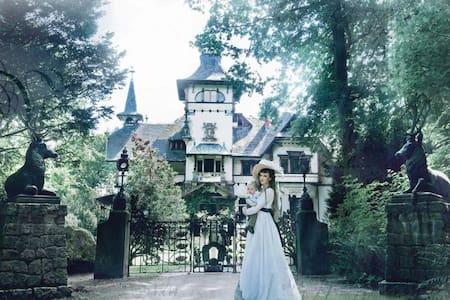 Schloss Heinrichshorst - Rogätz - ปราสาท