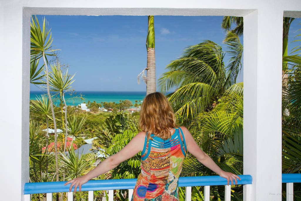 View of one of the appartements  at Caraibes Bonheur ****
