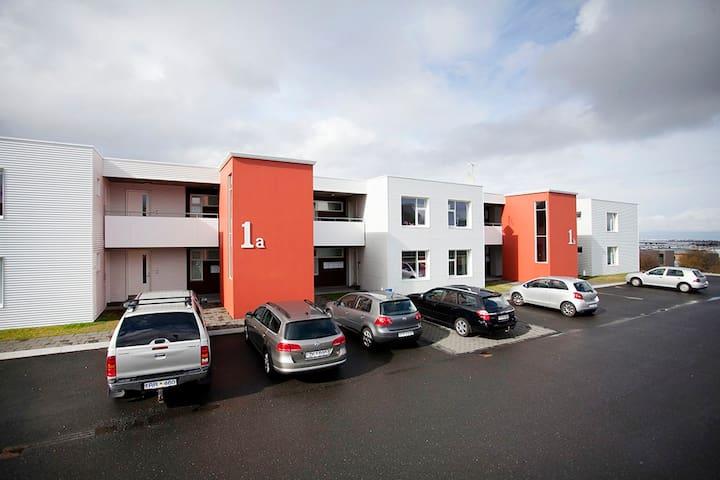 Modern Icelandic Apartment