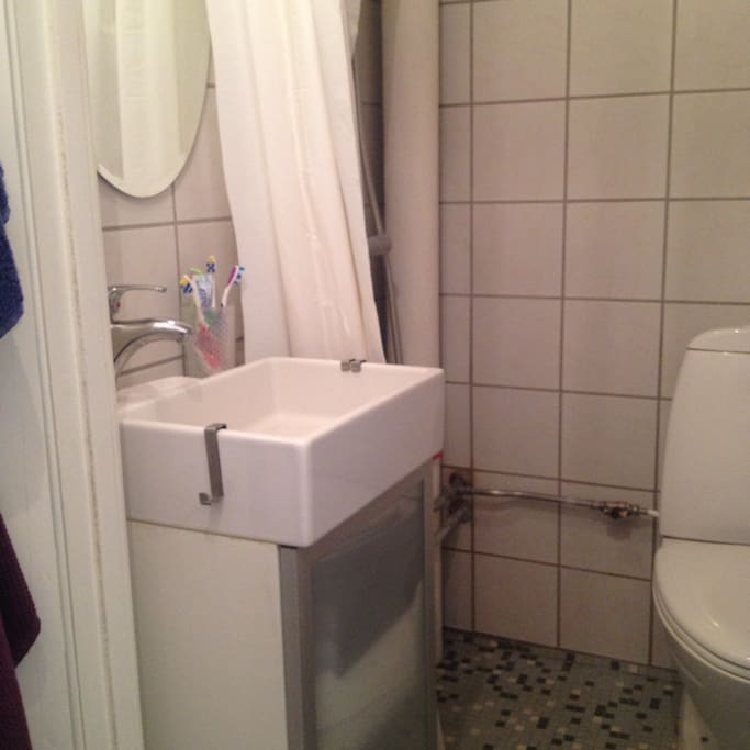 Little bathroom with toilet and shower