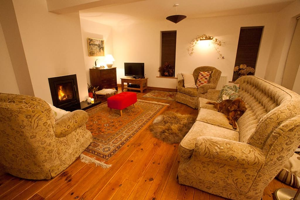 Sitting room, with Stovax fireplace and removable sofa accessory!