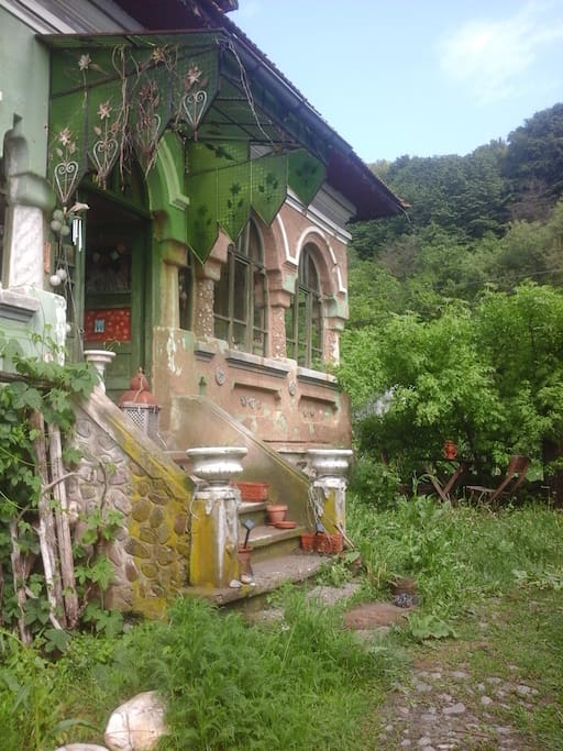 a creative natural traditional house