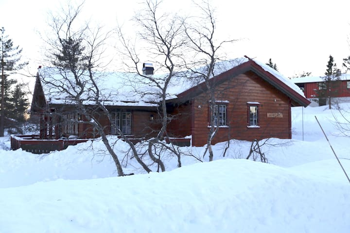 Large and cozy cottage on Blefjell.