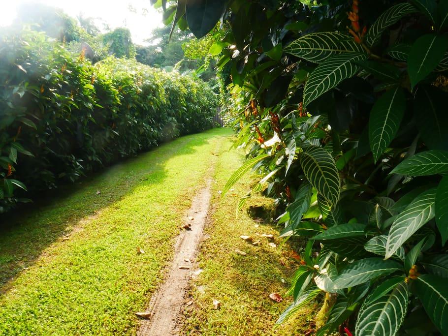 caminho que leva a nosso refúgio
