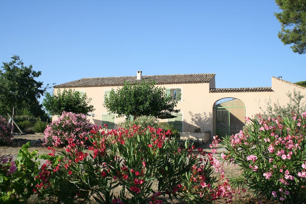 Mas Languedocien Avec Piscine Villas 224 Louer 224 Saint