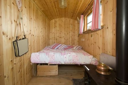 Shepherds Hut,set in rural location - Liskeard