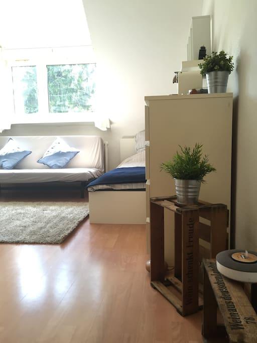 g nstiges apartment in frankfurt wohnungen zur miete in. Black Bedroom Furniture Sets. Home Design Ideas