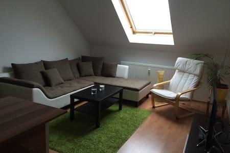 2-Zimmer Ferienwohnung mitten im schönen Kaßberg - Chemnitz - 公寓