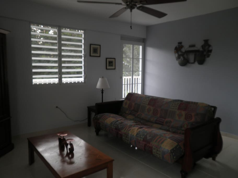 Roomy Livingroom