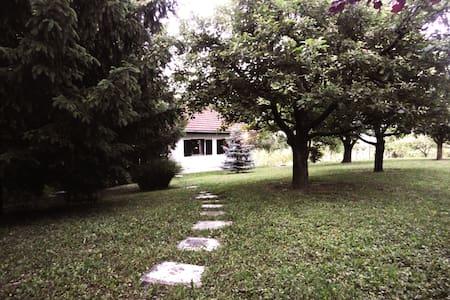 Cottage surrounded by vineyards - Jakobski dol - House