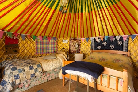4 Person Traditional Mongolian Yurt - Tuam
