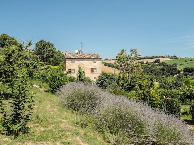 Room 2 - The Secret Garden B&B - Montotto - Monterubbiano - Bed & Breakfast