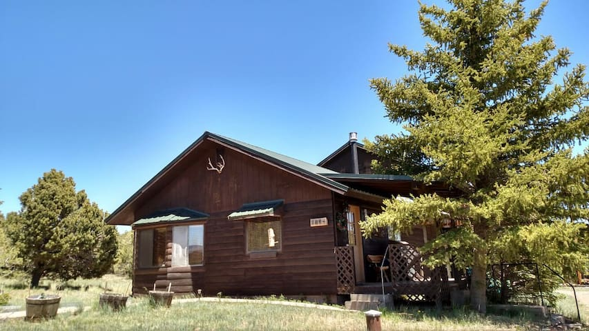Rustic mountain cabin. - South Fork - Ev