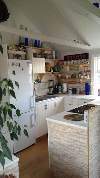 Rustic kitchen with all emenities.
