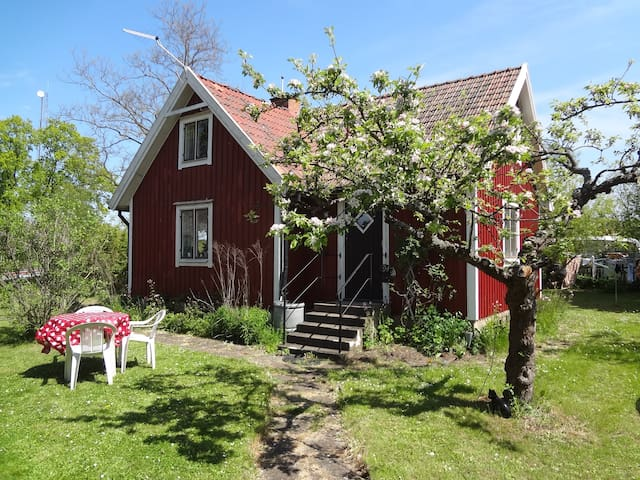 Lovely Cottage for 4 people - Färjestaden - Houten huisje