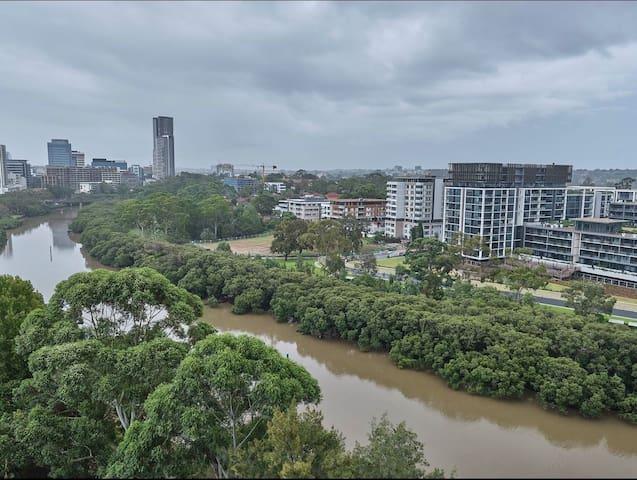 Stunning apt/super convenient/city n river view