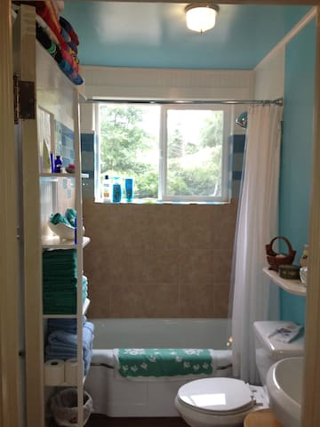 Our newly remodeled bath - towels for the bathroom and the beach!