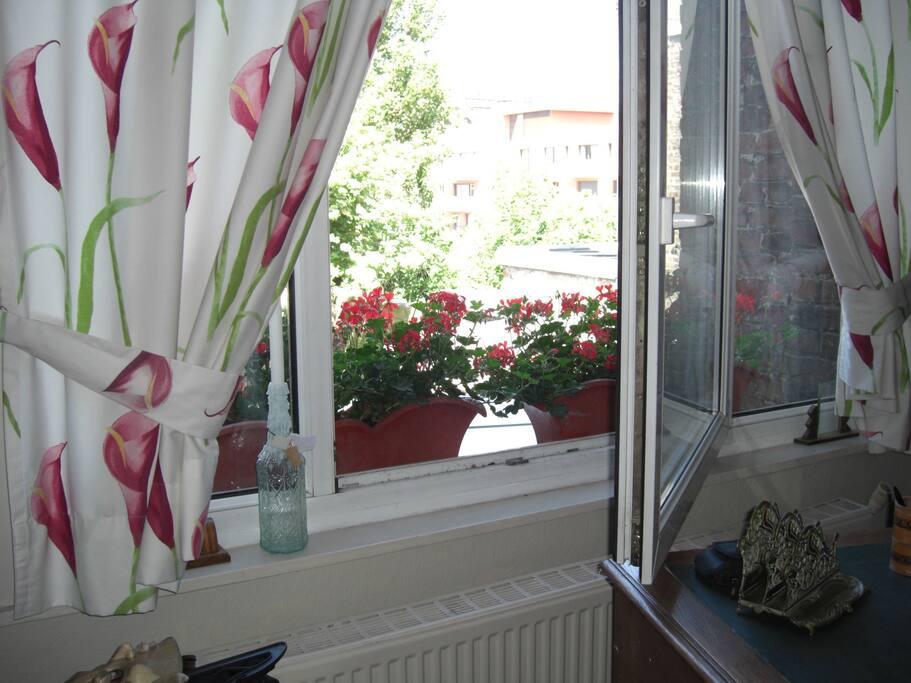 Large fenêtre sur le jardin