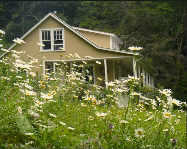 Blue Ridge Mountain Farm House - Lansing - Casa