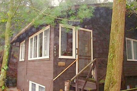 Lake Michigan Private Beach Cottage - Pentwater - Cabin