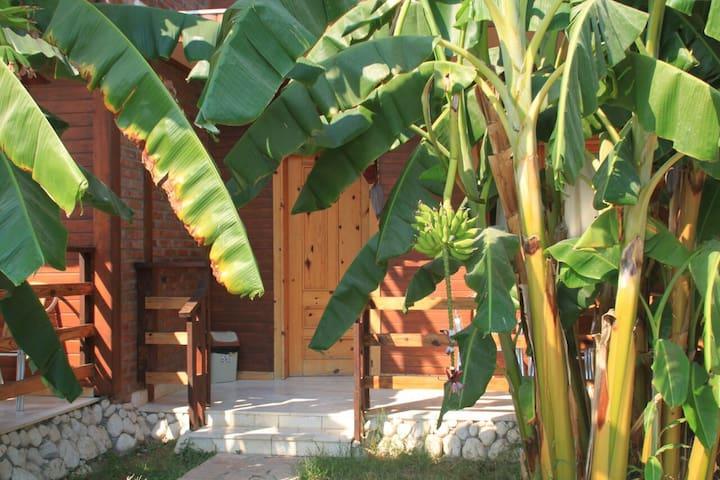 Vila druri Dhermi -Bungalow