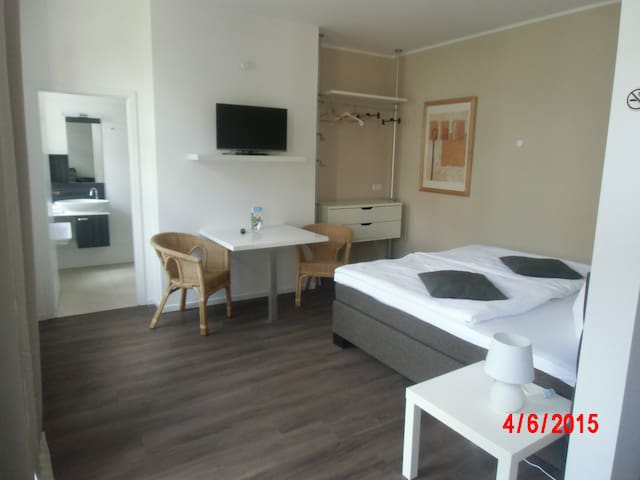 Apartment mit Stil in Elbnähe - Magdeburg - Kondominium