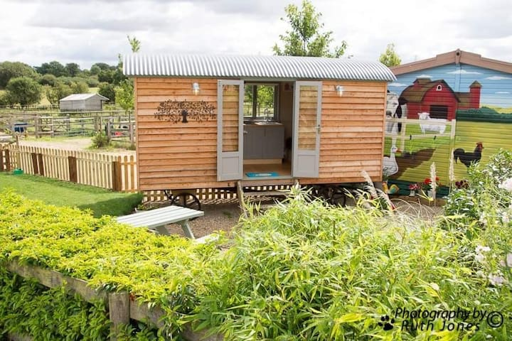 Thistley's Shepherd's Hut.  Perfect for Isolating