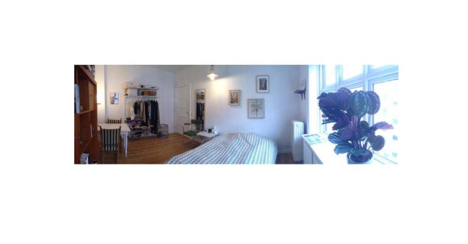 Bright and spacious room near the center of CPH
