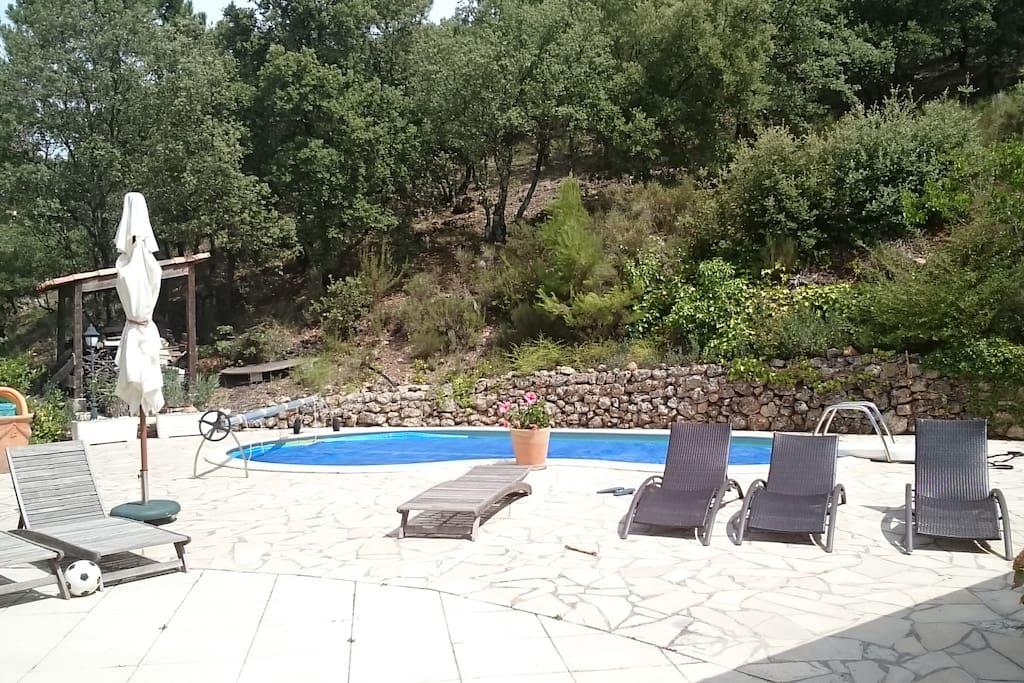 rez de jardin 60m2 et piscine appartements louer tourtour provence alpes c te d 39 azur france. Black Bedroom Furniture Sets. Home Design Ideas