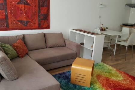 Apartmán Francouzská v centru Brna